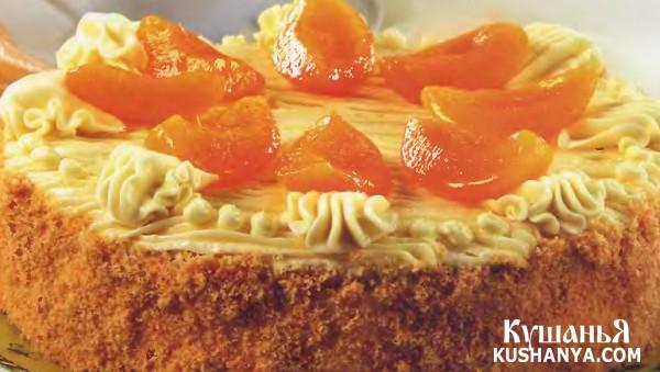 Фото Торт слоеный с абрикосами