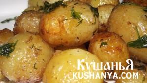 Картофель молодой жареный фото