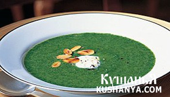 Фото Суп из шпината