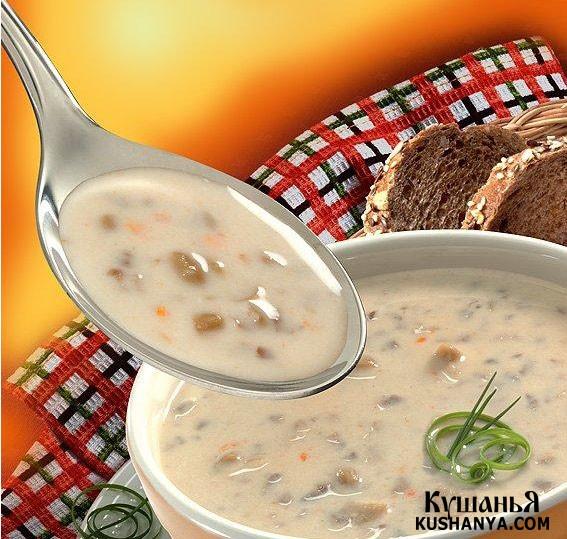Фото Суп молочно-овсяный с черносливом