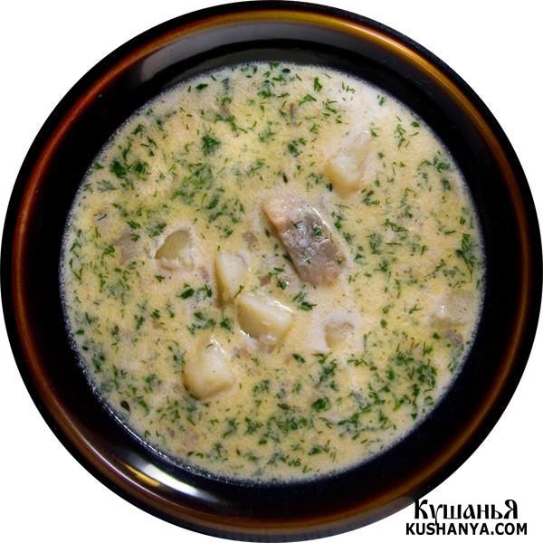 Фото Молочный суп с сельдью