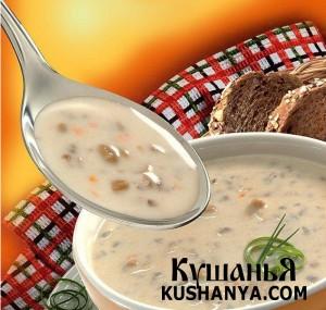 Суп молочно-овсяный с черносливом фото