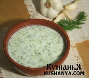 Суп из свежего и кислого молока фото