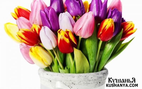 Фото Поздравляем с 8 марта !!!