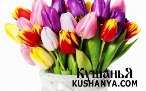 Поздравляем с 8 марта !!! фото