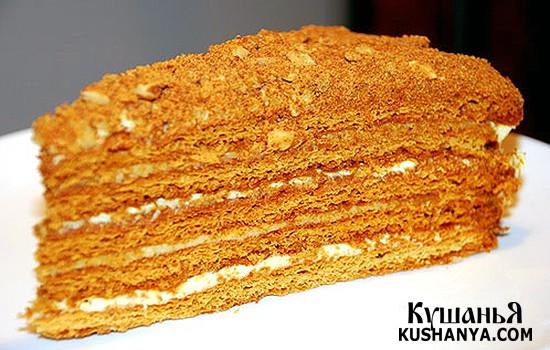 Фото Медовый торт