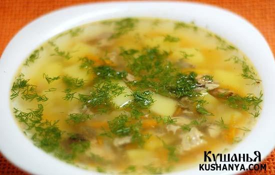 Фото Быстрый суп