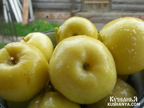 Фото Моченые яблоки