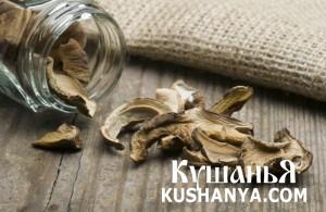 Белые грибы сушеные фото