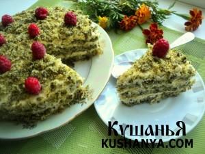 Торт «Лесной мох» фото