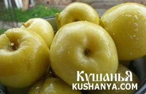 Простые моченые яблоки фото